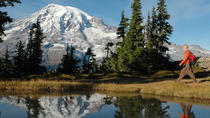 Mt Rainier Small-Group Hiking or Snowshoeing Tour with Lunch, Seattle