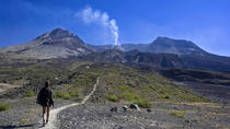 Small-Group Full-Day Tour of Mount St Helens Volcano from Seattle, Seattle, Day Trips