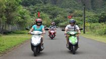 Oahu Shore Excursion: Independent Scooter Adventure, Oahu, Ports of Call Tours