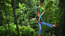 3-Day Rainforest Meets the Reef Multi Day Trip: Cape Tribulation, Daintree Rainforest and Reef...