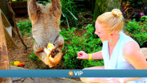 Viator VIP: Keeper-for-a-Day Program at Wild Florida, Orlando