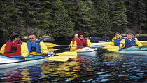Sitka Shore Excursion: Sea Kayaking Adventure, Sitka, Ports of Call Tours