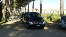 Private Arrival Transfer: Rome Fiumicino Airport to Hotel, Rome