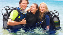 Scuba Diving Lesson in Bermuda, Bermuda, Ports of Call Tours