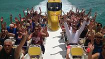 Wildcat Boat Adventure Blast in Bermuda, Bermuda, Jet Boats & Speed Boats