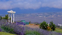 Small-Group Maui Tour: Haleakala National Park, Lavender Farm and Wine Tasting, Maui, Bike & ...