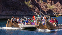 Las Vegas Combo Tour: Grand Canyon Helicopter Flight and Colorado River Float Day Trip, Las Vegas