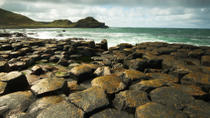 Belfast Shore Excursion: Giant's Causeway and City Sightseeing Tour, Belfast, Hop-on Hop-off Tours