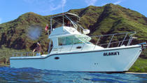 Private Eco-Tour: Snorkeling and Wildlife-Viewing Yacht Cruise from Waianae, Oahu
