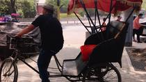 Private Cultural Tour: Hutong Rickshaw Ride and Dumpling Making in Beijing, Beijing, Bike & ...