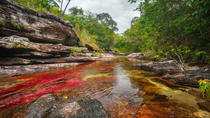 3-Day Tour to Caño Cristales from Bogotá, Bogotá