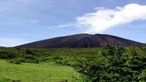 Pacaya Volcano Day Trip from Antigua, Antigua, Overnight Tours