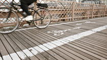 Private Brooklyn Bridge Guided Bike Tour, New York City, Bike & Mountain Bike Tours