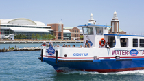 Water Taxi in Chicago, Chicago, Day Cruises