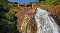 2-Day Private Tour from Goa: Jungle Adventure in Mollem National Park Including Dudhsagar Falls and ...
