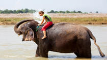 Private Eco-Tour: Crocodile Watching, Spice Plantation and Elephant Experience in Goa, Goa