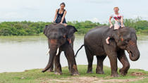 Private Tour: Jungle Adventure from Goa Including Elephant Ride and Lunch, Goa