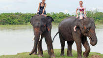 Private Tour: Jungle Adventure from Goa Including Elephant Ride, Lunch and Dinner, Goa