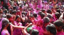 Viator Exclusive: 2-Day Holi Festival Experience in Mathura from Delhi, New Delhi