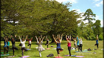 Yoga And Meditation Experience at Lodhi Gardens in Delhi, New Delhi, Half-day Tours