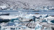 3-Hour Glacier Hike and Glacier Lagoon Boat Ride in Skaftafell, Skaftafell, Hiking & Camping