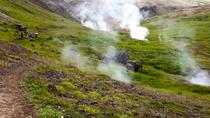 Day Trip from Reykjavik: Hiking and Hot Springs Adventure in Reykjadalur and Hveragerdi, Reykjavik, ...