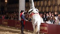 Jerez and Cadiz, Winery, Dancing Horses, Boat trip from Costa del Sol