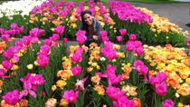 Behind-the-Scenes Keukenhof Gardens Day Trip from Amsterdam Including Picnic Lunch and Haarlem...