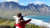 2-Day Whale Coast and Winelands to Cape Agulhas Adventure from Cape Town, Cape Town, Multi-day Tours