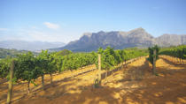 Stellenbosch Winelands Tasting Tour from Cape Town , Cape Town, Day Trips