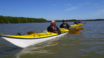 3- or 4-Day Everglades Kayaking and Camping Tour, Everglades National Park