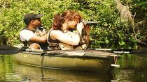 Mangrove Forest Kayak Eco-Tour in Florida Everglades, Everglades National Park, Eco Tours