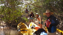 Marco Island Kajak-Tour mit optionalem Strandabstecher, Everglades National Park, Kayaking & ...