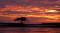 Marco Island Sunset or Moonlight Kayak Tour, Everglades National Park, Kayaking & Canoeing