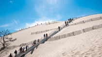 Bordeaux Super Saver: Small-Group Trip to Arcachon with Oyster Tasting and Lunch plus Médoc...