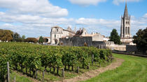 Bordeaux Super Saver: Small-Group Wine Tasting and Lunch plus St-Emilion Wine Tour, Bordeaux, null