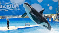 General Admission to the Miami Seaquarium, Miami, null