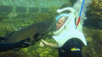 Underwater Helmet-Diving Experience at the Miami Seaquarium, Miami