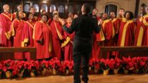 Harlem Gospel Experience Walking Tour, New York City, Literary, Art & Music Tours