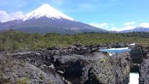Private Tour: Puerto Montt, Puerto Varas and Vicente Peres Rosales National Park, Puerto Montt, ...
