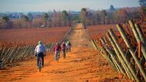 Valparaiso Shore Excursion: Casablanca Valley Wine Tour by Bike, Valparaíso, Ports of Call ...