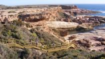 6-Day Eyre Peninsula Small-Group Camping Tour from Adelaide, Adelaide, Multi-day Tours