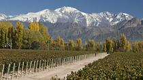 3-Night Tour to Mendoza by Air from Buenos Aires, Buenos Aires, null