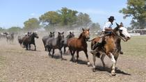 Gaucho Day Trip from Buenos Aires: Don Silvano Ranch, Buenos Aires, Cultural Tours