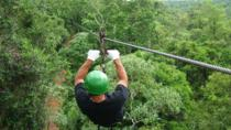 Iguazu Forest Eco-Adventure: Trekking, Ziplining and Rappelling, Puerto Iguazu, Day Trips