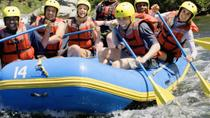 White Water Rafting Tour from San Martin de los Andes at Rio Chimehuin, San Martin de los Andes, ...