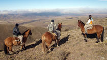 Mendoza Horseback Riding Tour with Traditional Argentine Asado, Mendoza