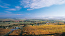 Boutique Yarra Valley Winery Day Trip from Melbourne, Melbourne, Wine Tasting & Winery Tours