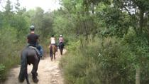 Horseback Riding Tour in Serralada Litoral Natural Park from Barcelona, Barcelona