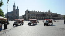 City package: Wawel Castle Guided Tour with Private Krakow Tour by Eco-Vehicle, Krakow, Cultural ...